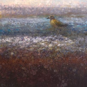 Ewoud-de-Groot-wildlife-art-artist-animals-birds-oil-painting-canvas-exhibition-Golden-Plover