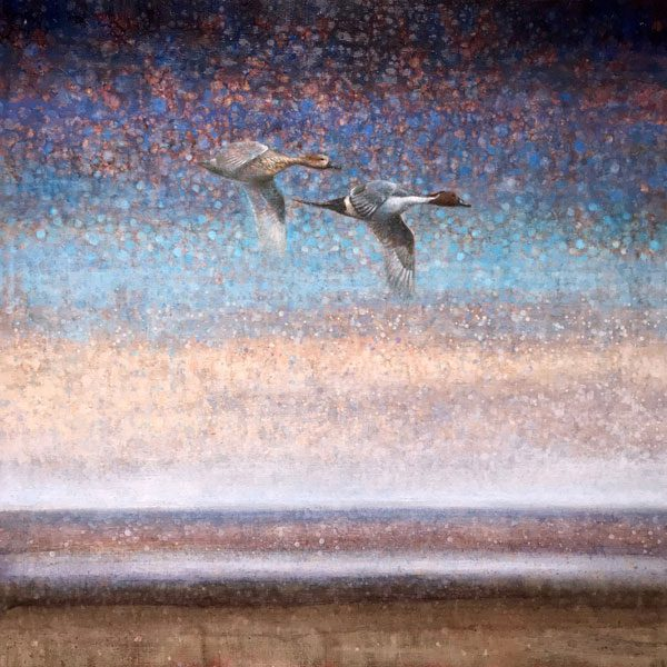 Ewoud-de-Groot-wildlife-art-artist-animals-birds-oil-painting-canvas-linen-Pintails