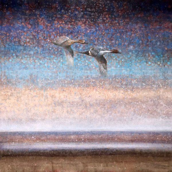Ewoud-de-Groot-wildlife-art-artist-animals-birds-oil-painting-canvas-linen-Pintails