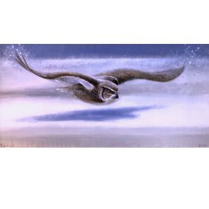 Ewoud-de-Groot-wildlife-art-artist-animals-birds-oil-painting-canvas-linen-Snow-glider