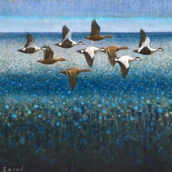 ewoud-de-groot-wildlife-art-artist-animals-birds-oil-painting-canvas-linen-eiders
