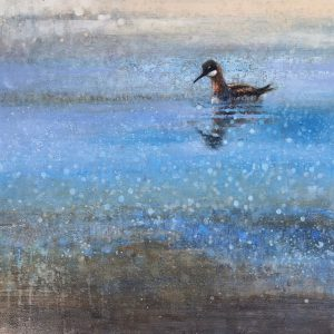 Ewoud-de-Groot-wildlife-art-artist-animals-birds-oil-painting-canvas-linen-phalarope