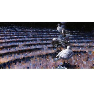 ewoud-de-groot-wildlife-art-artist-animals-birds-oil-painting-canvas-linen-preening-snowgeese
