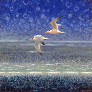 ewoud-de-groot-wildlife-art-artist-animals-birds-oil-painting-canvas-linen-royal-terns