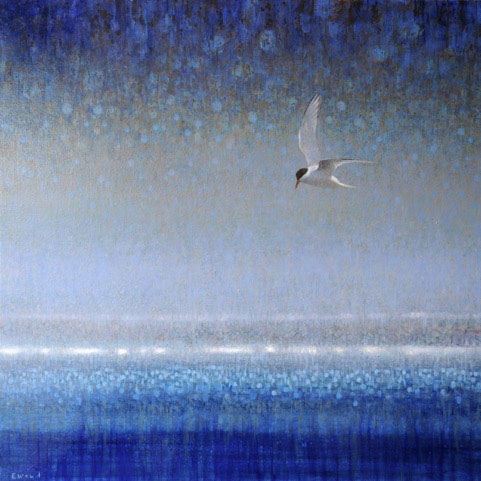 ewoud-de-groot-arctic-tern-painting-oil-on-linen