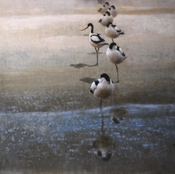 ewoud-de-groot-avocet-flock-2013