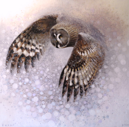 ewoud-de-groot-wildlife-laplandowl-120x120-cm-oil-on-linen-2014