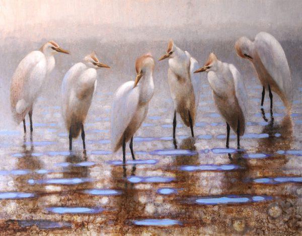 ewoud-de-groot-wildlife-resting-egrets-2013