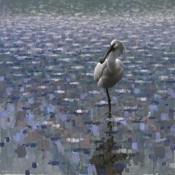 ewoud-de-groot-wildlife-resting-spoonbill