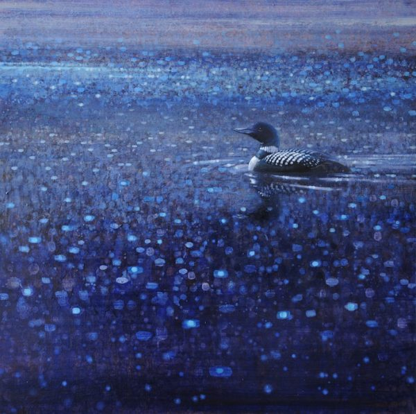 ewoud-de-groot-wildlife-twilight-loon-03-2012