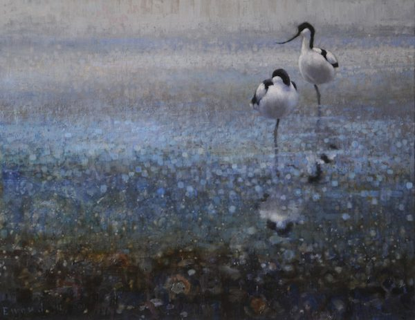 ewoud-de-groot-wildlife-two-avocets-2011