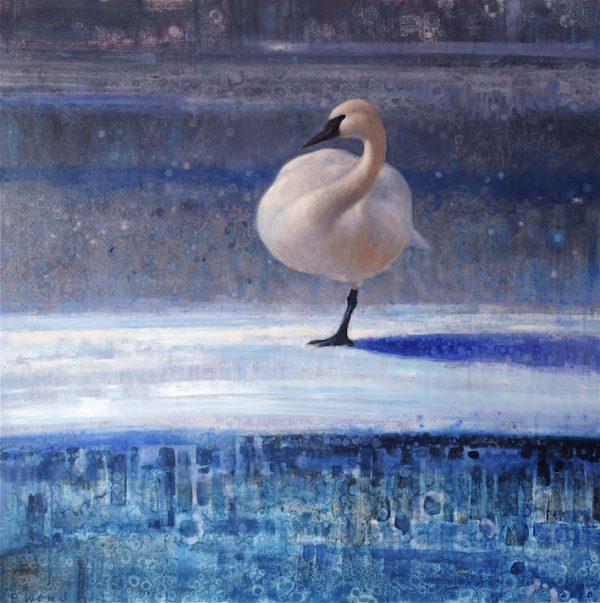 ewoud-de-groot-wildlife-winter-swan-2011