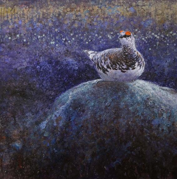 ewoud-de-groot-wildlife-birds08