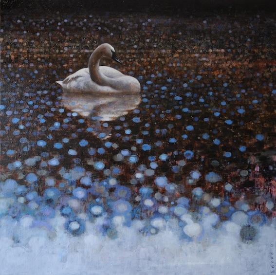 ewoud-de-groot-wildlife-swan01