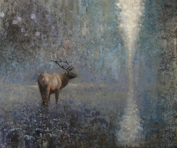 ewoud-de-groot-wildlife01