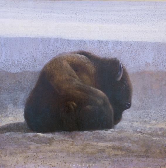 ewoud-de-groot-wildlife04